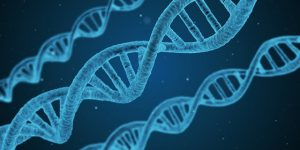 genetic testing | pathology tests | Perpetual Wellbeing Brisbane nutritionists