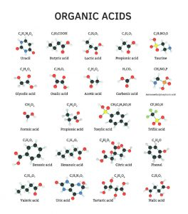 organic acids | organic acid test | perpetual wellbeing