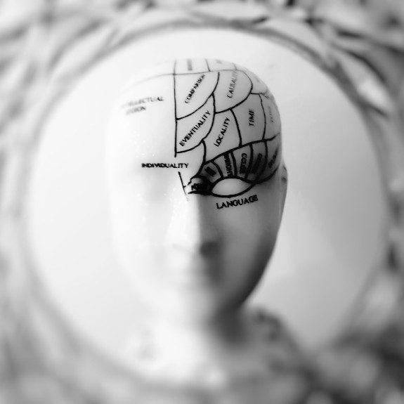 Neurotransmitter-profile